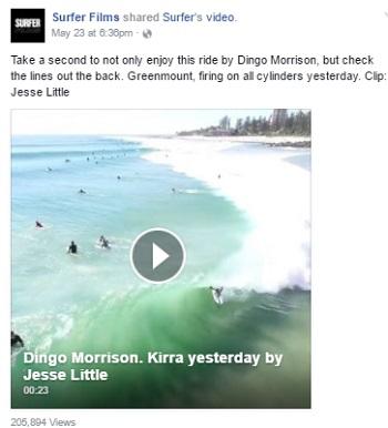 Dingo Morrison surfing