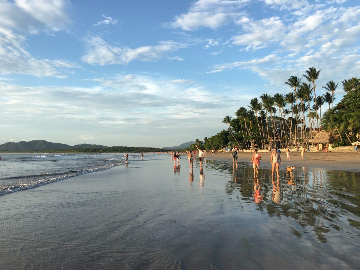 Tamarindo Area Costa Rica Surf Trips