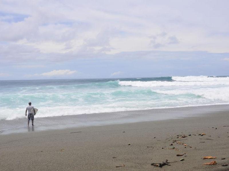 Matapalo wave