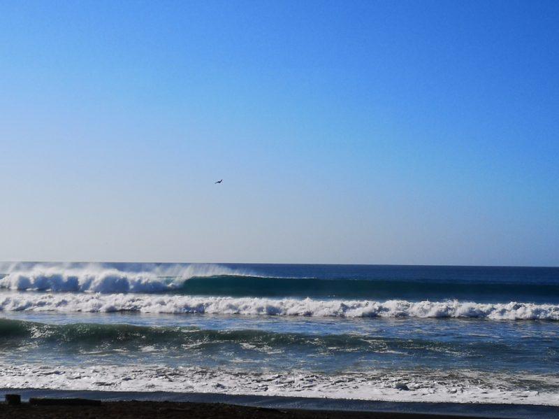 SeafariCR surf photo