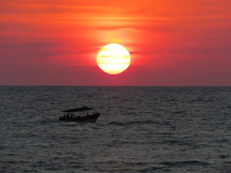 Sunset Matapalo Pavones