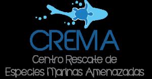 CREMA-sea-turtle