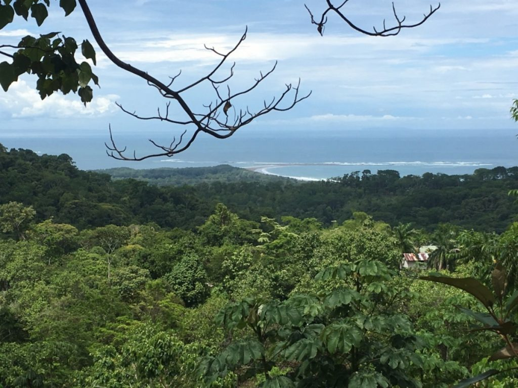 View of Uvita Whale Tail from trail