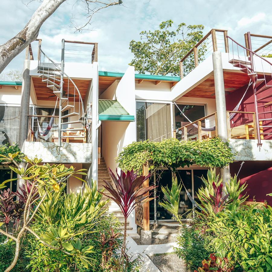 the-buena-vibra-collective-nosara-illuminar-suites-outside
