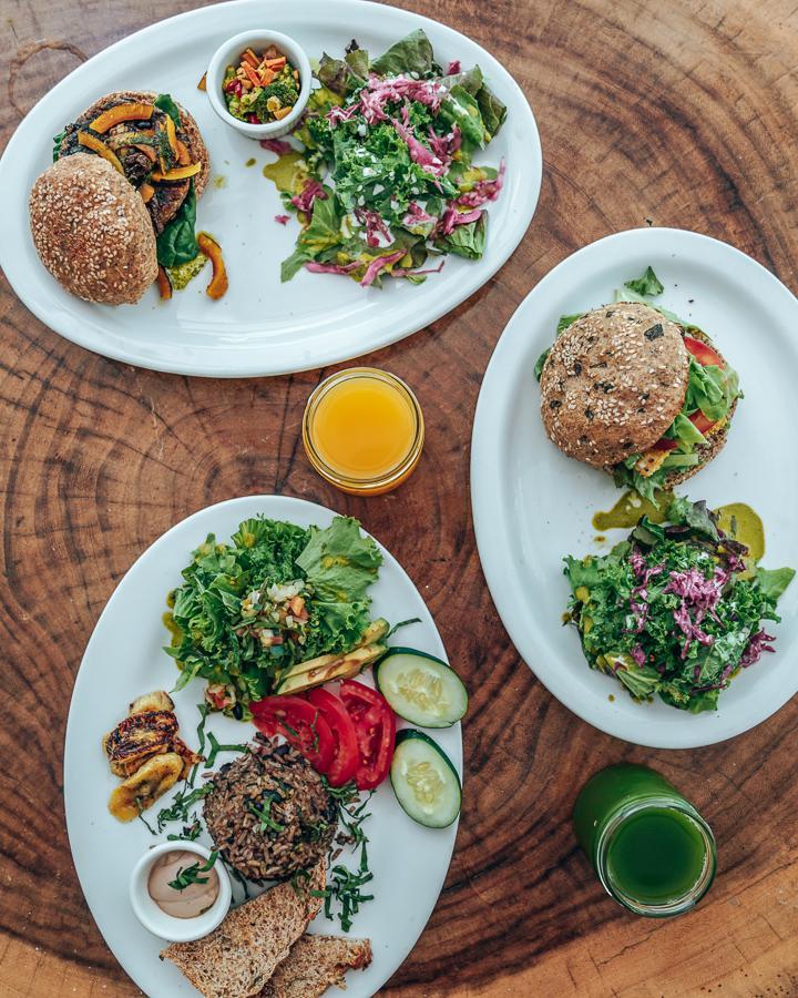 the-buena-vibra-collective-nosara-restaurant