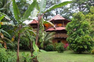 don-jons-santa-teresa-cabins3
